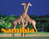 Namibia Gay Hotels