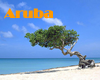 Aruba Gay Hotels