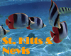 Saint Kitts and Nevis Gay Hotels
