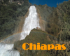 Chiapas, Mexico Gay Hotels